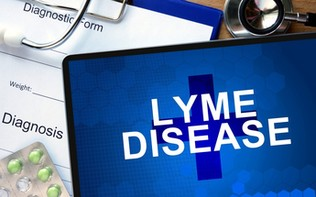 My Experience with Lyme Disease so Far