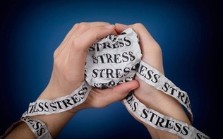 How Stress Manifests in the Body