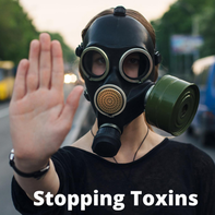 Stop Mold & Environmental Toxins