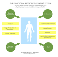 Functional Medicine -A Personalized Lifestyle Medicine Approach