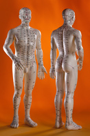 Acupuncture 101: The Basics and the Benefits with Tuan Nguyen and Thuc-Dan Nguyen