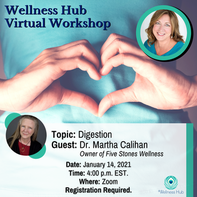 Wellness Hub Virtual Workshop on Digestion