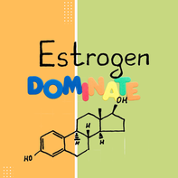 7 Symptoms of Estrogen Dominance